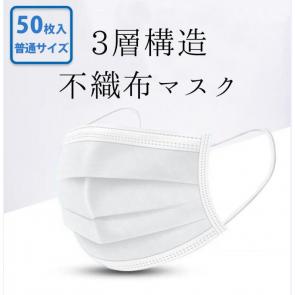 マスク 50枚入り  ウィルス 花粉症対策 飛沫感染対策のマスクフィルター